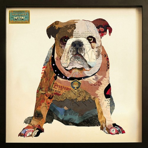 Bulldog collage framed art